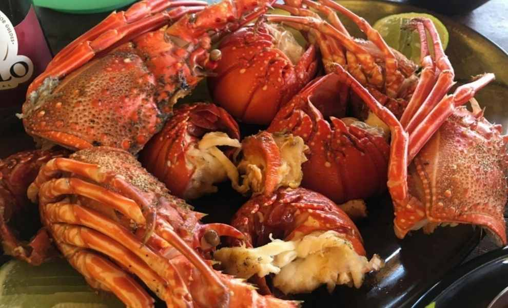 Perfect Summer Lobster