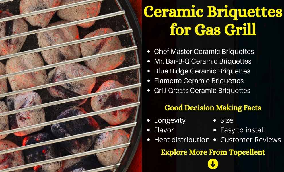 Best Ceramic Briquettes for Gas Grill